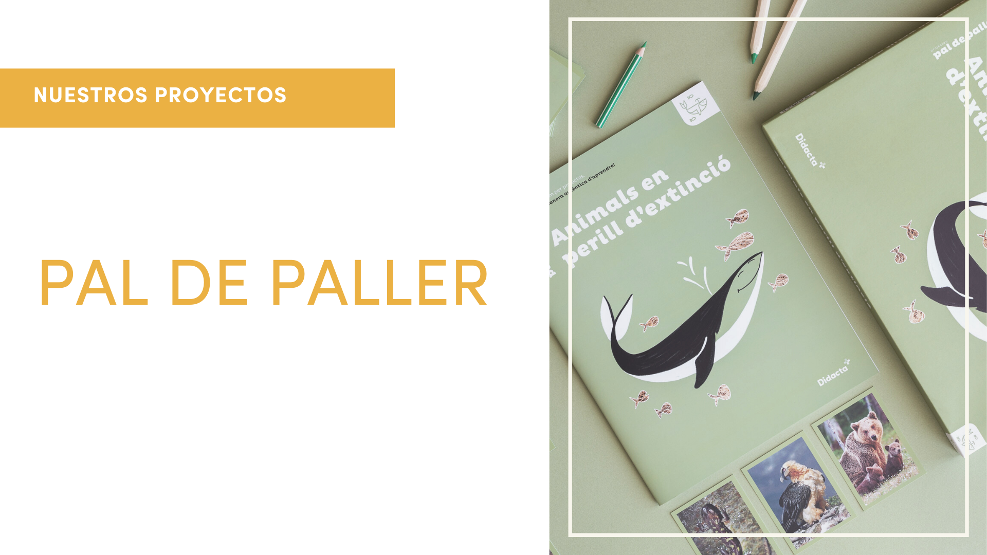 pal de paller post al blog ES